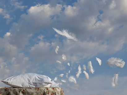 Mirjana Vodopija, Freedom falling, feathers, 2013 / inkjet print on paper transferred on alubond, 75 x 100 cm